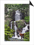 Shenandoah National Park, Virginia - Doyles River Falls Láminas por  Lantern Press