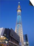 Japan, Honshu, Kanto, Tokyo, Asakusa, Skytree Tower Prints by Steve Vidler