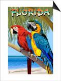 Florida - Parrots Stampe di  Lantern Press