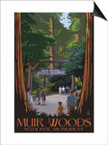 Muir Woods National Monument, California - Entrance Prints by  Lantern Press