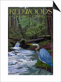 Redwoods State Park - Heron and Waterfall Art by  Lantern Press