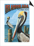 Islamorada, Florida Keys - Pelicans Prints by  Lantern Press