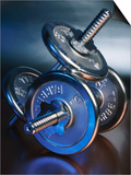 Close-Up of Steel Weightlifting Dumbbells Prints