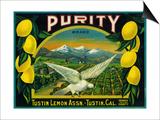 Purity Lemon Label - Tustin, CA Art by  Lantern Press