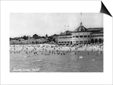 Santa Cruz, California - Crowds on the Beach Photograph Print by  Lantern Press