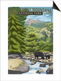 Leconte Creek and Bear Family - Great Smoky Mountains National Park, TN Posters by  Lantern Press