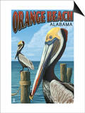 Orange Beach, Alabama - Brown Pelican Art by  Lantern Press