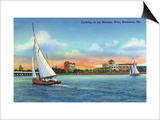 Bradenton, Florida - Sailboat on Manatee River Prints by  Lantern Press