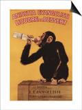 Italy - Anisetta Evangelisti Liquore da Dessert Promotional Poster Prints