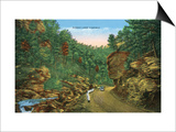 Great Smoky Mts. Nat'l Park, Tn - Scenic Loop Highway View, c.1944 Poster by  Lantern Press
