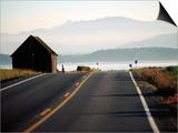 Ebey Road Near Ebey's Landing, Whidbey Island, Washington Posters by John Elk III