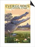 The Everglades National Park, Florida - Alligator Scene Plakater af  Lantern Press