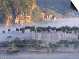 Morning Mist Over Vinales Valley, Pinar Del Rio, Cuba Posters by Alfredo Maiquez