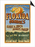 Florida - Orange Orchard Sign Art by  Lantern Press