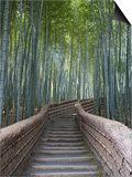 Stairway Through Bamboo Grove Above Adashino Nembutsu-Ji Temple Prints by Brent Winebrenner