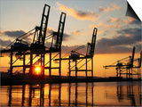 Harbour Cranes, Tacoma, Washington Prints by John Elk III