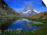 Matterhorn and the Riffelsee, Valais, Switzerland Posters por Gareth McCormack