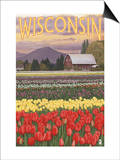 Tulip Fields - Wisconsin Posters by  Lantern Press