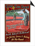 Cape Cod, Massachusetts - Cranberry Posters by  Lantern Press