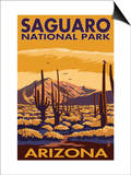 Saguaro National Park, Arizona Posters by  Lantern Press