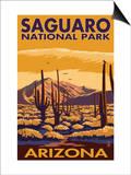 Saguaro National Park, Arizona Posters