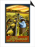 Hawaiian Pineapple Harvest Affiches par  Lantern Press
