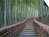 Stairway Through Bamboo Grove Above Adashino Nembutsu-Ji Temple Print by Brent Winebrenner