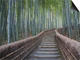 Stairway Through Bamboo Grove Above Adashino Nembutsu-Ji Temple Print by Brent Winebrenner