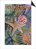 Orange Beach, Alabama - Tidepools Prints by  Lantern Press