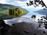 Tarbet Isle on Loch Lomond, Loch Lomond and the Trossachs National Park Art by Feargus Cooney