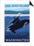 San Juan Island, Washington - Orca and Calf Posters by  Lantern Press