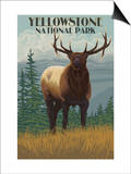 Yellowstone National Park - Elk in Forest Posters by  Lantern Press