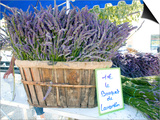 Lavender for Sale at 1 Euro a Bunch, at the Twice Weekly Famrer's Market in Coustellet Posters by Barbara Van Zanten