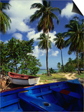 Wooden Fishing Boats Among Palm Trees, Pigeon Point, Trinidad & Tobago Art by Michael Lawrence