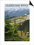 Hurricane Ridge, Olympic National Park, Washington Poster by  Lantern Press