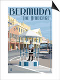 Bermuda - The Birdcage Poster by  Lantern Press