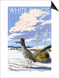 White Sands National Monument, New Mexico - Roadrunner Posters by  Lantern Press
