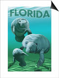 Florida - Manatees Art by  Lantern Press