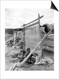 Navajo Women Weaving Blankets Photograph Poster