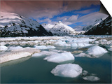 Icebergs and Mountains at Portage Lake, Portage Glacier Recreation Area, Anchorage, U.S.A. Posters by Ann Cecil