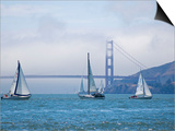 Sailing Boats with the Golden Gate Bridge and Summer Fog in Background, San Francisco, California Art by Roberto Gerometta