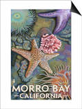Morro Bay, CA - Tidepool Prints
