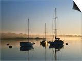 Moored Boats at Sunrise Posters by Richard l'Anson