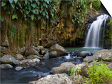 Annandale Falls, Constantine, St. George, Grenada Art by Holger Leue