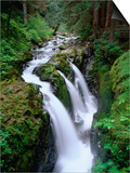 Sol Duc Falls Olympic National Park, Washington, USA Posters by Rob Blakers