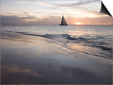 Catamaran at Sunset Seen from Bucuti Beach Resort on Eagle Beach Prints by Holger Leue