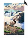 Mt. Olympus and Elk - Olympic National Park, Washington Posters by  Lantern Press
