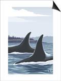 Orca Whale Fins Art by  Lantern Press