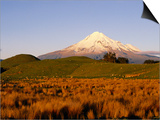 Snow-Capped Mt. Taranaki from Across Plain, Taranaki, North Island, New Zealand Prints by Oliver Strewe