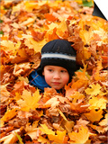 Child Playing in Leaves in Kadriorg Park, Tallinn, Estonia Prints by Jonathan Smith